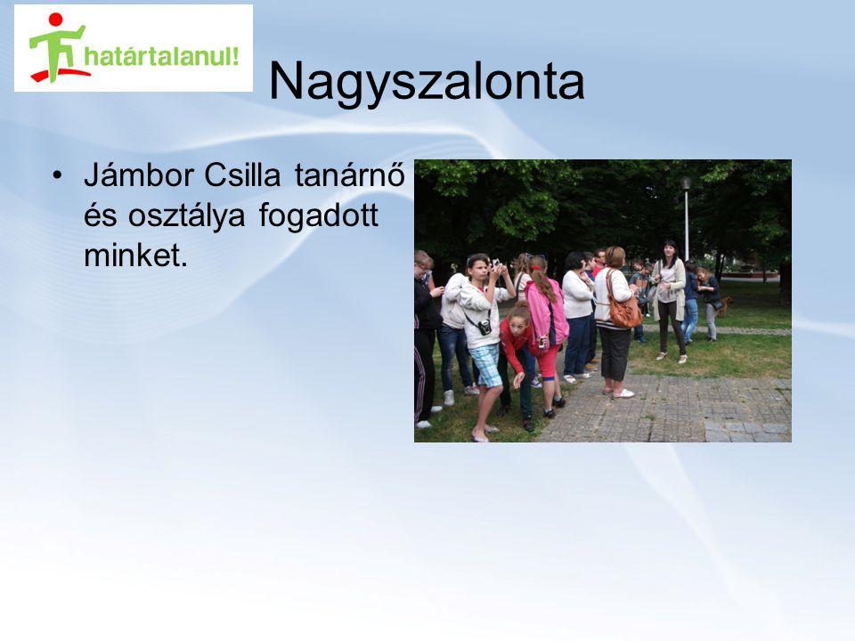 Nagyszalonta Jámbor Csilla tanárnő és osztálya fogadott minket.