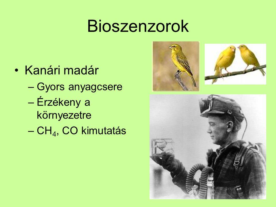 Bioszenzorok Kanári madár –Gyors anyagcsere –Érzékeny a környezetre –CH 4, CO kimutatás