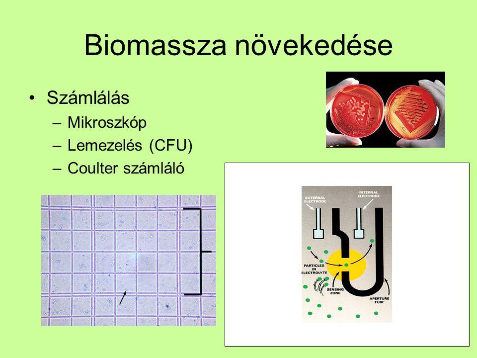 Biomassza növekedése Számlálás –Flow citometria –FACS (fluorescence activated cell sorting)