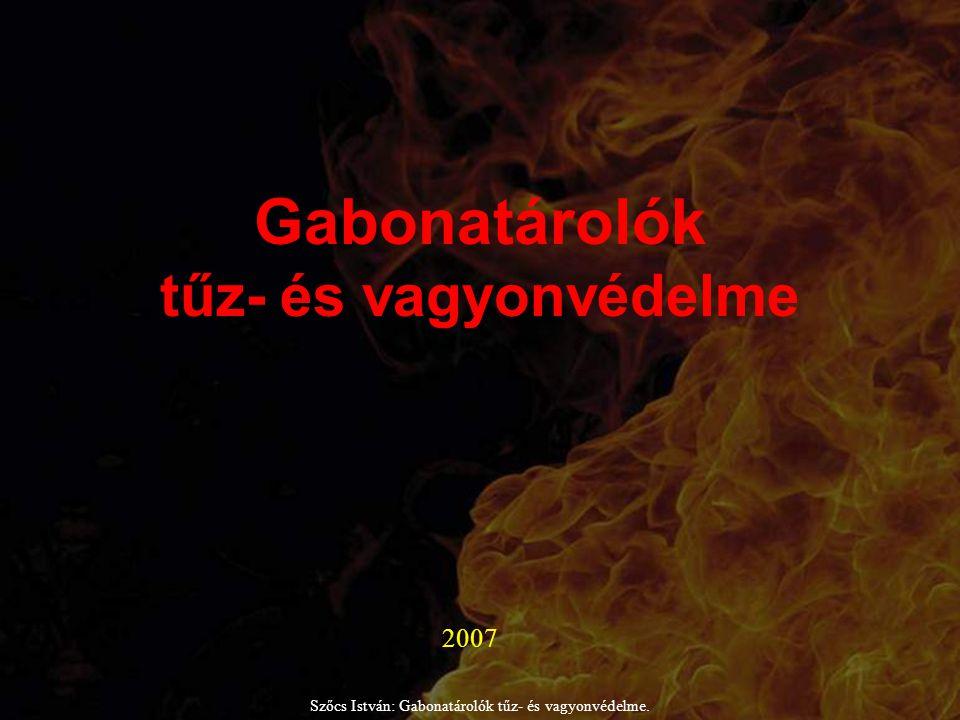Az előadó: Szőcs István: Gabonatárolók tűz- és vagyonvédelme.