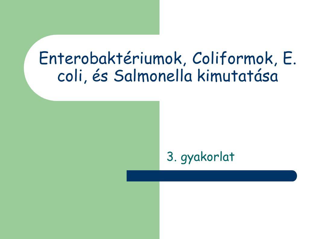 Enterobaktériumok, Coliformok, E. coli, és Salmonella kimutatása 3. gyakorlat