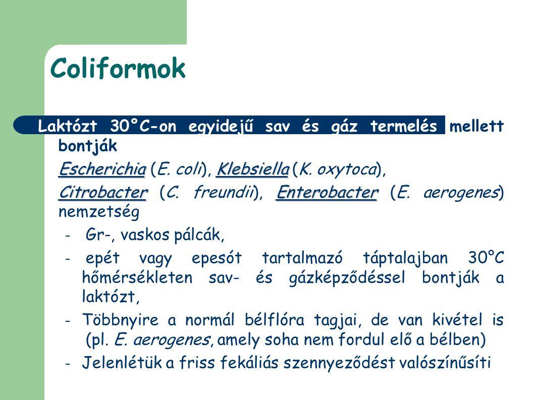 Coliformok Laktózt 30°C-on egyidejű sav és gáz termelés mellett bontják EscherichiaKlebsiella Escherichia (E. coli), Klebsiella (K. oxytoca), Citrobac