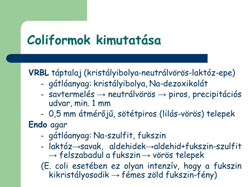 Coliformok kimutatása VRBL táptalaj (kristályibolya-neutrálvörös-laktóz-epe) – gátlóanyag: kristályibolya, Na-dezoxikolát – savtermelés → neutrálvörös → piros, precipitációs udvar, min.