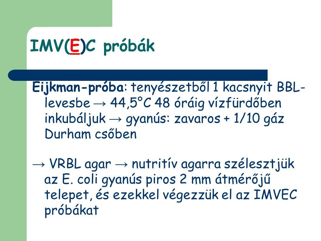 IMV(E)C próbák Eijkman-próba: tenyészetből 1 kacsnyit BBL- levesbe → 44,5°C 48 óráig vízfürdőben inkubáljuk → gyanús: zavaros + 1/10 gáz Durham csőben → VRBL agar → nutritív agarra szélesztjük az E.