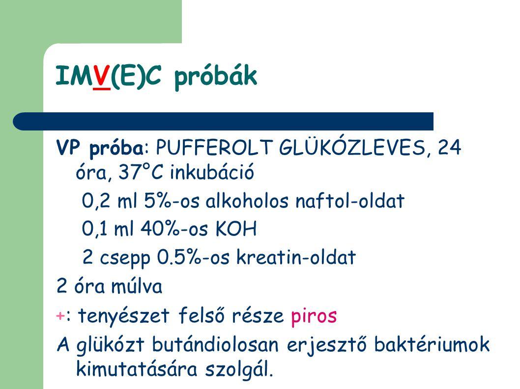 IMV(E)C próbák VP próba: PUFFEROLT GLÜKÓZLEVES, 24 óra, 37°C inkubáció 0,2 ml 5%-os alkoholos naftol-oldat 0,1 ml 40%-os KOH 2 csepp 0.5%-os kreatin-oldat 2 óra múlva +: tenyészet felső része piros A glükózt butándiolosan erjesztő baktériumok kimutatására szolgál.