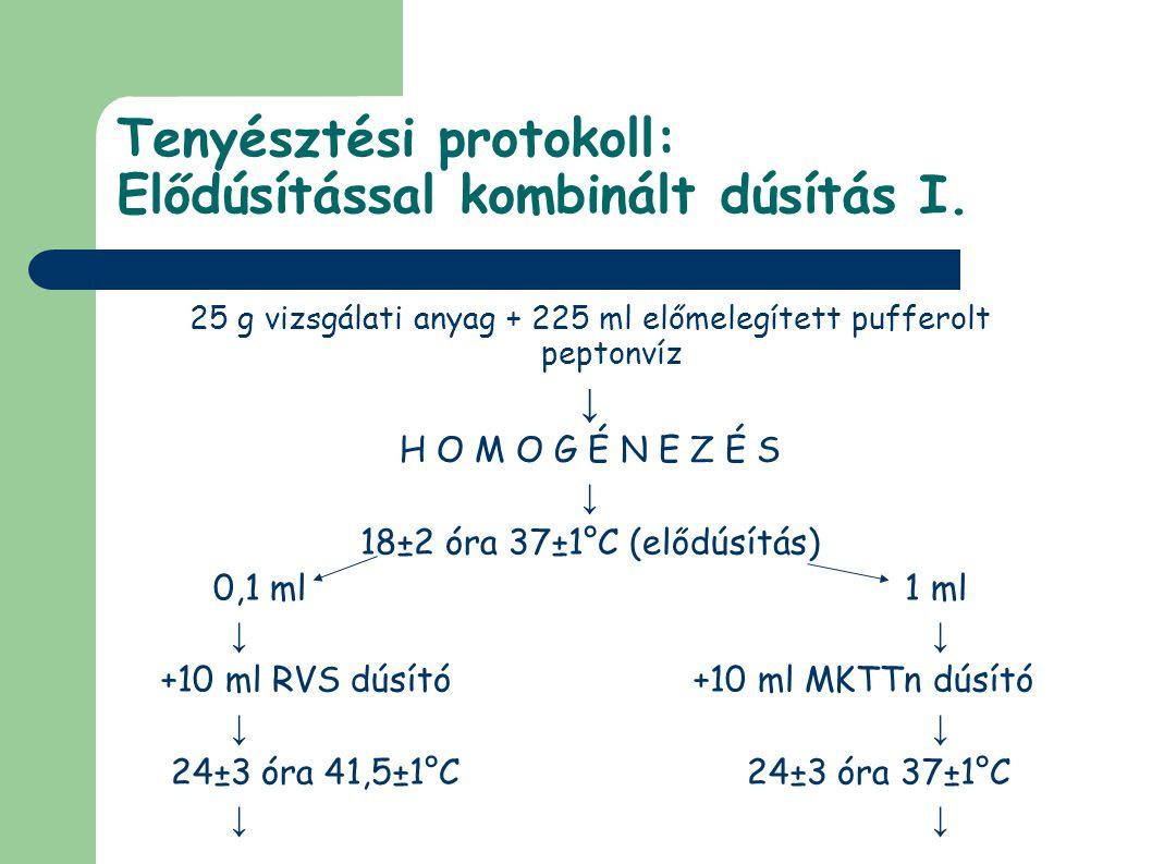 Tenyésztési protokoll: Elődúsítással kombinált dúsítás I. 25 g vizsgálati anyag + 225 ml előmelegített pufferolt peptonvíz ↓ H O M O G É N E Z É S ↓ 1