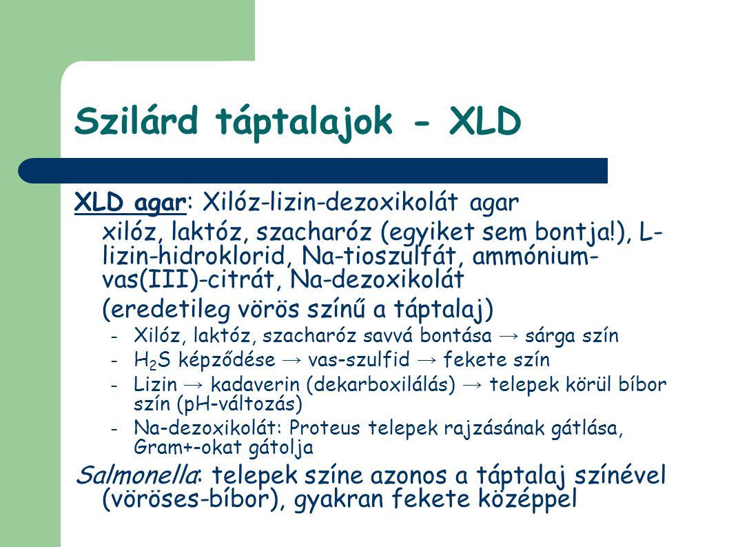 Szilárd táptalajok - XLD XLD agar: Xilóz-lizin-dezoxikolát agar xilóz, laktóz, szacharóz (egyiket sem bontja!), L- lizin-hidroklorid, Na-tioszulfát, ammónium- vas(III)-citrát, Na-dezoxikolát (eredetileg vörös színű a táptalaj) – Xilóz, laktóz, szacharóz savvá bontása → sárga szín – H 2 S képződése → vas-szulfid → fekete szín – Lizin → kadaverin (dekarboxilálás) → telepek körül bíbor szín (pH-változás) – Na-dezoxikolát: Proteus telepek rajzásának gátlása, Gram+-okat gátolja Salmonella: telepek színe azonos a táptalaj színével (vöröses-bíbor), gyakran fekete középpel