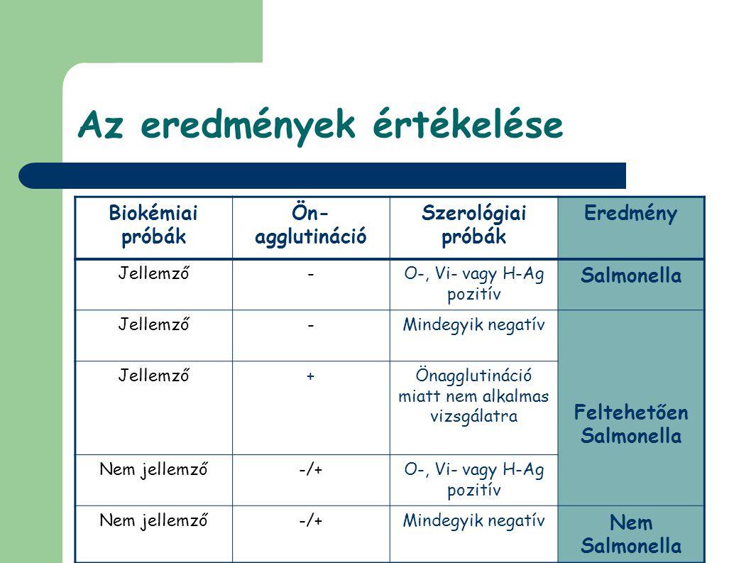 Az eredmények értékelése Biokémiai próbák Ön- agglutináció Szerológiai próbák Eredmény Jellemző-O-, Vi- vagy H-Ag pozitív Salmonella Jellemző-Mindegyik negatív Feltehetően Salmonella Jellemző+Önagglutináció miatt nem alkalmas vizsgálatra Nem jellemző-/+O-, Vi- vagy H-Ag pozitív Nem jellemző-/+Mindegyik negatív Nem Salmonella