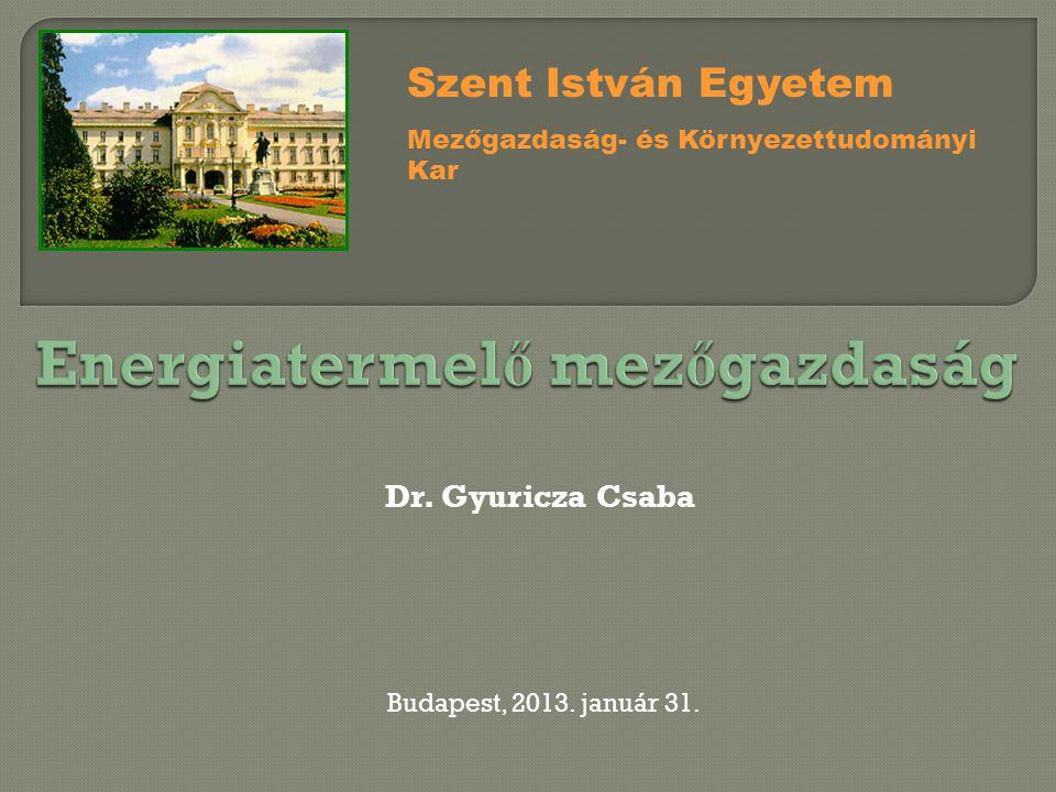 Dr. Gyuricza Csaba Szent István Egyetem Mezőgazdaság- és Környezettudományi Kar Budapest, 2013. január 31.