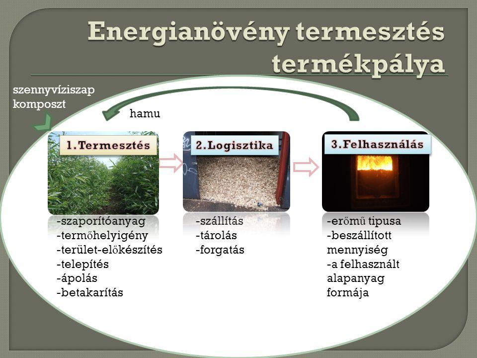 Alapanyag termelés LogisztikaFelhasználás -szaporítóanyag -term ő helyigény -terület-el ő készítés -telepítés -ápolás -betakarítás -szállítás -tárolás
