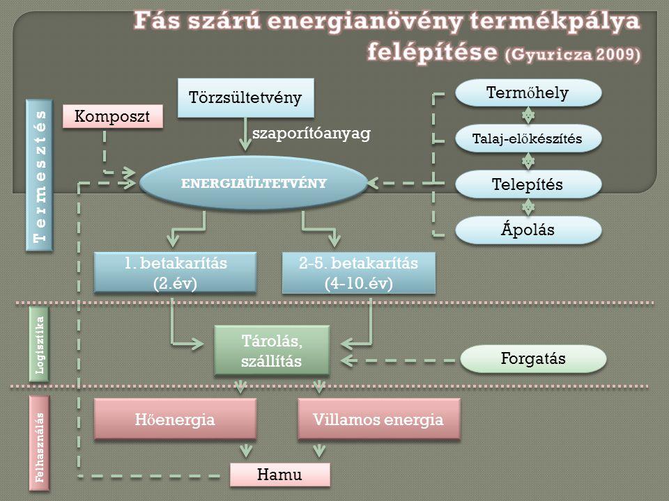 Törzsültetvény szaporítóanyag ENERGIAÜLTETVÉNY 1. betakarítás (2.év) 2-5. betakarítás (4-10.év) Tárolás, szállítás Forgatás H ő energia Villamos energ