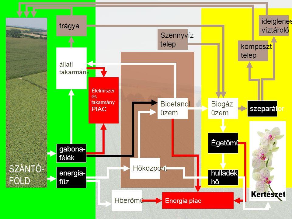 SZÁNTÓ- FÖLD gabona- félék állati takarmány Élelmiszer és takarmány PIAC trágya szeparátor ideiglenes víztároló komposzt telep Biogáz üzem Égetőmű Sze
