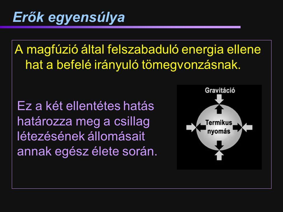 Erők egyensúlya A magfúzió által felszabaduló energia ellene hat a befelé irányuló tömegvonzásnak. Ez a két ellentétes hatás határozza meg a csillag l