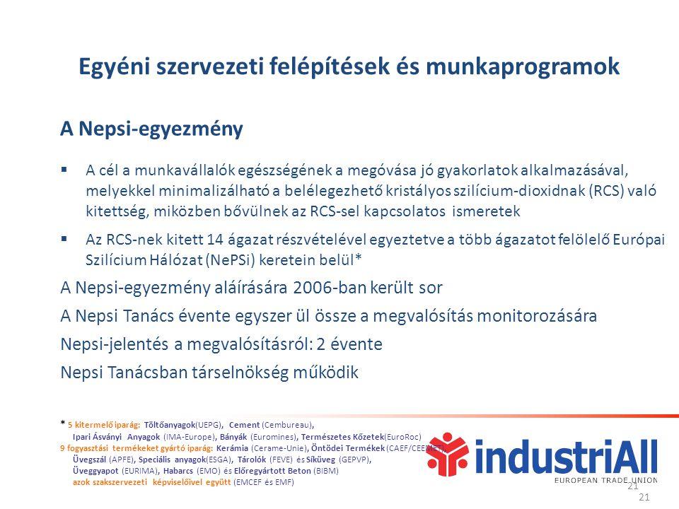 21 Egyéni szervezeti felépítések és munkaprogramok A Nepsi-egyezmény  A cél a munkavállalók egészségének a megóvása jó gyakorlatok alkalmazásával, melyekkel minimalizálható a belélegezhető kristályos szilícium-dioxidnak (RCS) való kitettség, miközben bővülnek az RCS-sel kapcsolatos ismeretek  Az RCS-nek kitett 14 ágazat részvételével egyeztetve a több ágazatot felölelő Európai Szilícium Hálózat (NePSi) keretein belül* A Nepsi-egyezmény aláírására 2006-ban került sor A Nepsi Tanács évente egyszer ül össze a megvalósítás monitorozására Nepsi-jelentés a megvalósításról: 2 évente Nepsi Tanácsban társelnökség működik 21 * 5 kitermelő iparág: Töltőanyagok(UEPG), Cement (Cembureau), Ipari Ásványi Anyagok (IMA-Europe), Bányák (Euromines), Természetes Kőzetek(EuroRoc) 9 fogyasztási termékeket gyártó iparág: Kerámia (Cerame-Unie), Öntödei Termékek (CAEF/CEEMET), Üvegszál (APFE), Speciális anyagok(ESGA), Tárolók (FEVE) és Síküveg (GEPVP), Üveggyapot (EURIMA), Habarcs (EMO) és Előregyártott Beton (BIBM) azok szakszervezeti képviselőivel együtt (EMCEF és EMF)