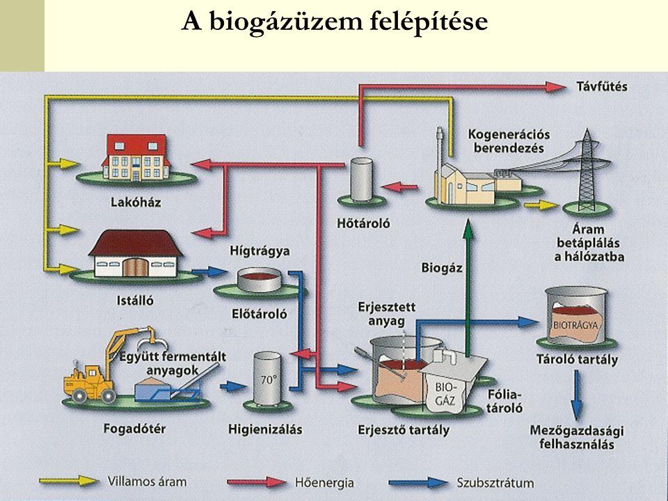 A biogázüzem felépítése