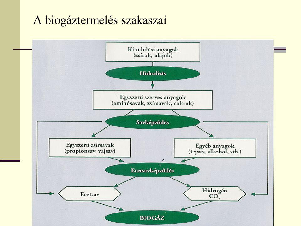 A keletkezett biogáz Autoterm (levegő) Alloterm (gőz) (típusai: pirolízis-, szintézis-, generátorgáz) átlagos fűtőértéke: 22 MJ/kg összetétele: CH 4 (60-70%), CO 2 (30-40%), mellékgázok (H 2 ; CO – 4%, H 2 S, O 2, N 2 ) A kinyerhető metán mennyiségét befolyásoló tényezők: a kiindulási szerves anyag összetétele, a biogáz-erjesztő berendezés műszaki színvonala, az alkalmazott erjesztési technológia, a szárazanyag-tartalom, az erjesztő tér hőmérséklete és egyéb mikrobiológiai feltételek.