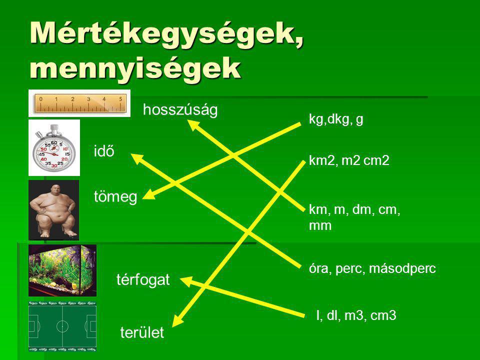 Mértékegységek, mennyiségek hosszúság idő tömeg térfogat terület kg,dkg, g km2, m2 cm2 km, m, dm, cm, mm óra, perc, másodperc l, dl, m3, cm3