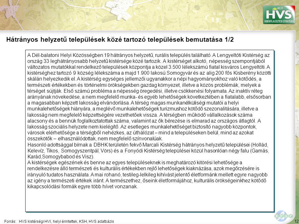 12 A Dél-balatoni Helyi Közösségben 19 hátrányos helyzetű, rurális település található.