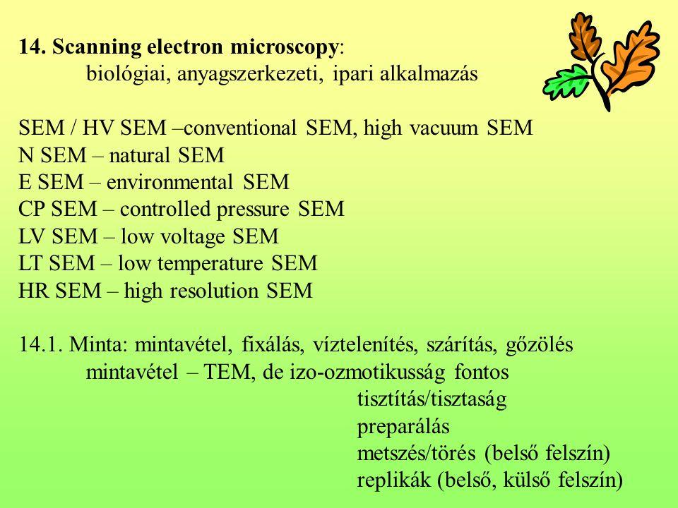 14. Scanning electron microscopy: biológiai, anyagszerkezeti, ipari alkalmazás SEM / HV SEM –conventional SEM, high vacuum SEM N SEM – natural SEM E S