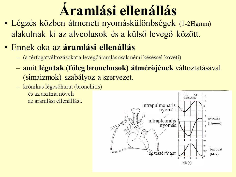 Légzés közben átmeneti nyomáskülönbségek (1-2Hgmm) alakulnak ki az alveolusok és a külső levegő között. Ennek oka az áramlási ellenállás –(a térfogatv