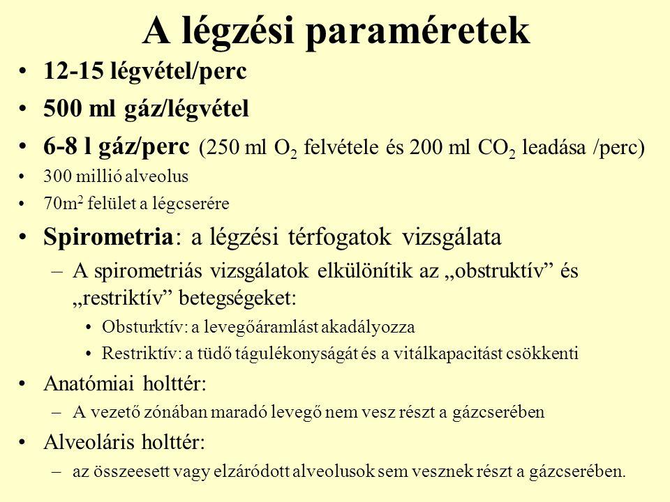A légzési paraméretek 12-15 légvétel/perc 500 ml gáz/légvétel 6-8 l gáz/perc (250 ml O 2 felvétele és 200 ml CO 2 leadása /perc) 300 millió alveolus 7