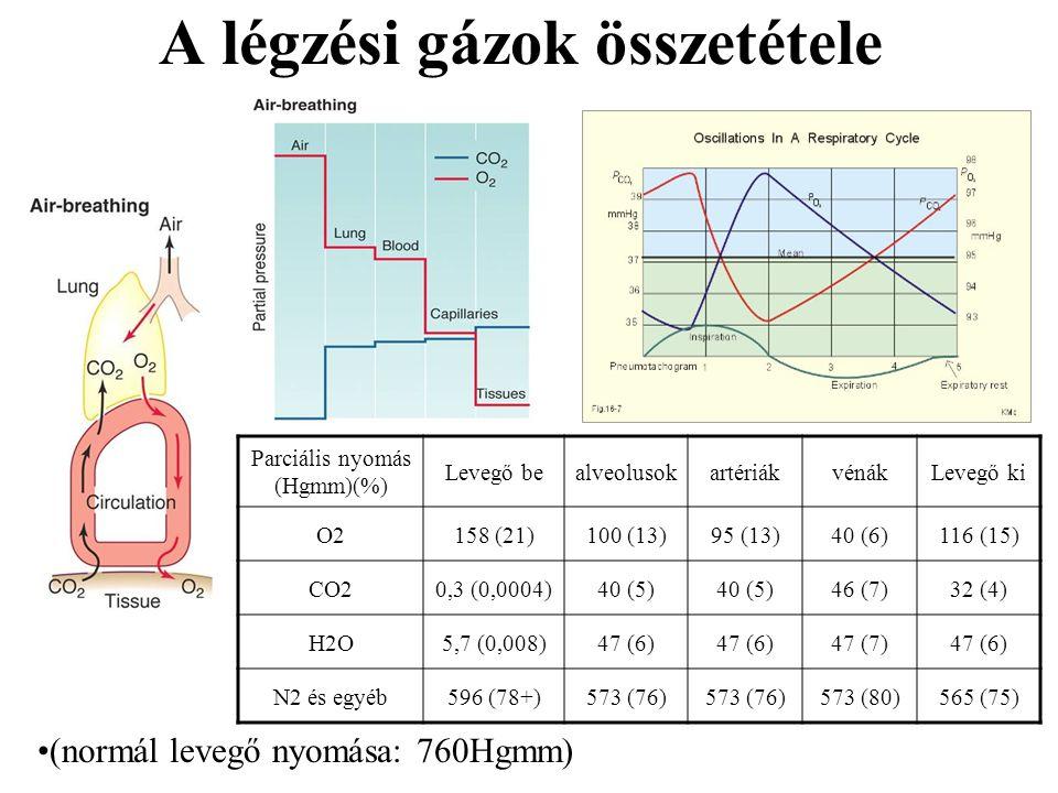 A légzési gázok összetétele (normál levegő nyomása: 760Hgmm) Parciális nyomás (Hgmm)(%) Levegő bealveolusokartériákvénákLevegő ki O2158 (21)100 (13)95