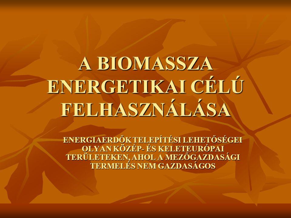 A BIOMASSZA ENERGETIKAI CÉLÚ FELHASZNÁLÁSA ENERGIAERDŐK TELEPÍTÉSI LEHETŐSÉGEI OLYAN KÖZÉP- ÉS KELETEURÓPAI TERÜLETEKEN, AHOL A MEZŐGAZDASÁGI TERMELÉS NEM GAZDASÁGOS