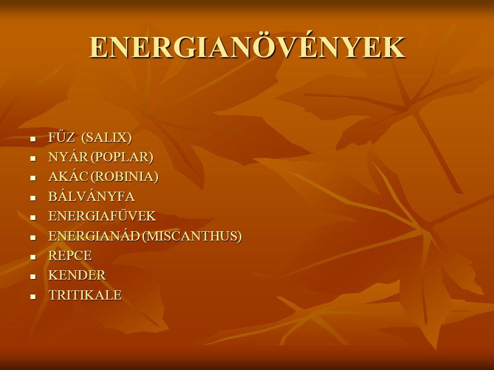 ENERGIANÖVÉNYEK FŰZ (SALIX) FŰZ (SALIX) NYÁR (POPLAR) NYÁR (POPLAR) AKÁC (ROBINIA) AKÁC (ROBINIA) BÁLVÁNYFA BÁLVÁNYFA ENERGIAFÜVEK ENERGIAFÜVEK ENERGIANÁD (MISCANTHUS) ENERGIANÁD (MISCANTHUS) REPCE REPCE KENDER KENDER TRITIKALE TRITIKALE