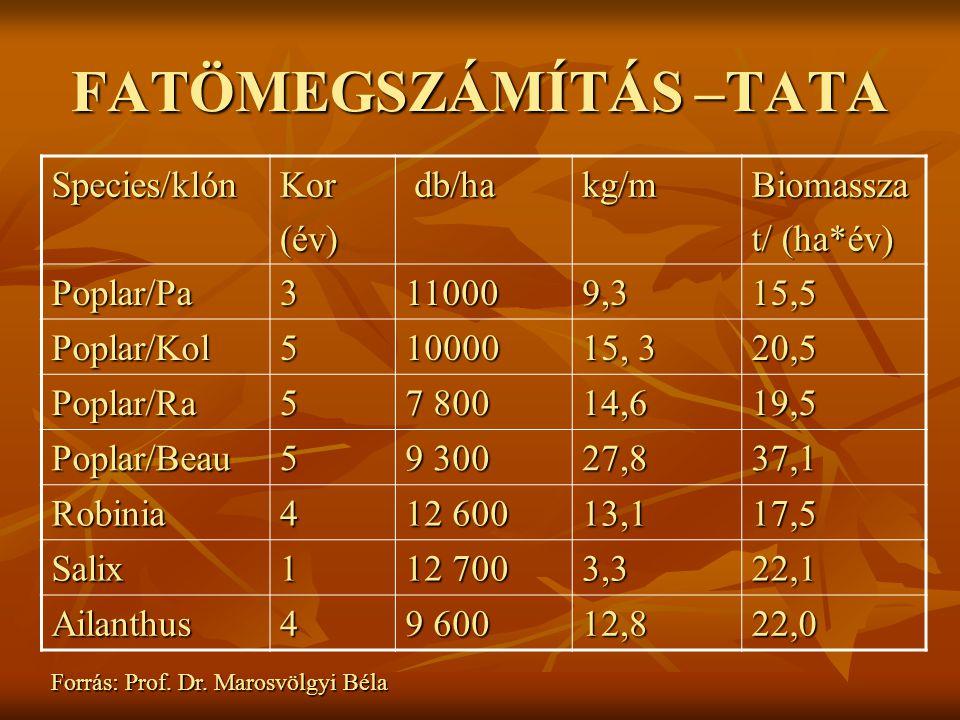 FATÖMEGSZÁMÍTÁS –TATA Species/klónKor(év) db/ha db/hakg/mBiomassza t/ (ha*év) Poplar/Pa3110009,315,5 Poplar/Kol510000 15, 3 20,5 Poplar/Ra5 7 800 14,619,5 Poplar/Beau5 9 300 27,837,1 Robinia4 12 600 13,117,5 Salix1 12 700 3,322,1 Ailanthus4 9 600 12,822,0 Forrás: Prof.