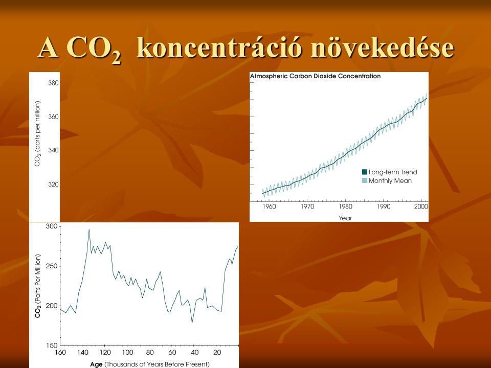További információ ENERGYFOREST PROJEKT www.energyforest.com GEO-MONTAN KKT 1121-Budapest, Kázmér lejtő 12.