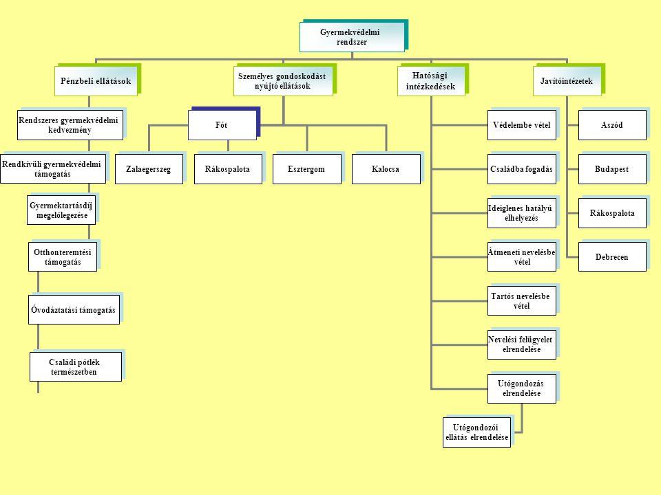 Jogszabályi változások és finanszírozás Szükségszerinti ellátás, Védelembe vétel, Családi pótlék 50%-ának természetbeni formája Irat betekintési jog ( kapcsolattartás, nagykorú testvér 21.életévéig tartó gondozása, várandós anyák átmeneti otthona, krízis férőhelyek – krízisambulancia, félutas-kiléptető ház)