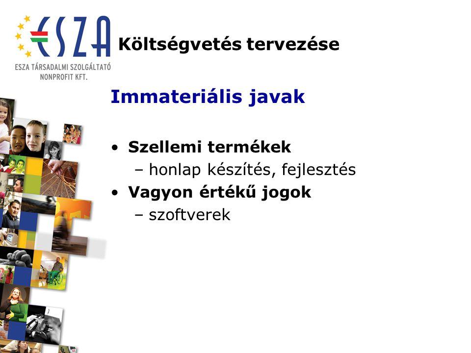 Költségvetés tervezése Immateriális javak Szellemi termékek –honlap készítés, fejlesztés Vagyon értékű jogok –szoftverek