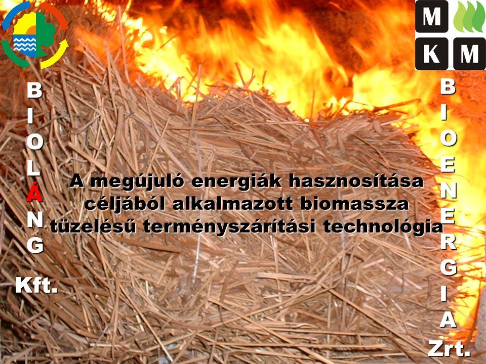 Szárítási költség csökkentése biomassza tüzeléssel 9.000 t/év feldolgozási kapacitás 15 t/h kukorica szárítás, 10 % nedvesség elvonással Hagyományos tüzelési mód földgáz égővel 32.000Ft / h Terményszárító