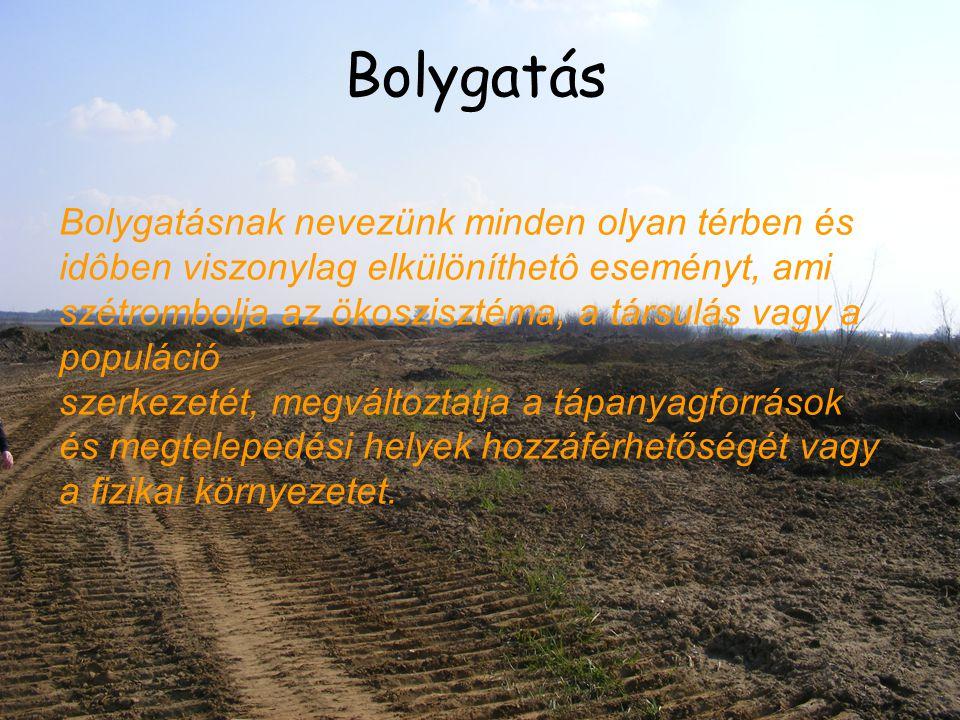 Bolygatás Bolygatásnak nevezünk minden olyan térben és idôben viszonylag elkülöníthetô eseményt, ami szétrombolja az ökoszisztéma, a társulás vagy a p