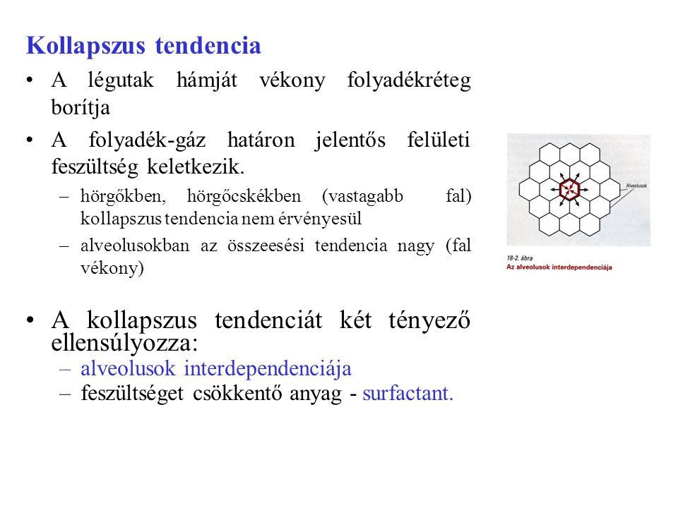 Hemoglobin szaturációját befolyásoló tényezők CO2 - Bohr effektus.