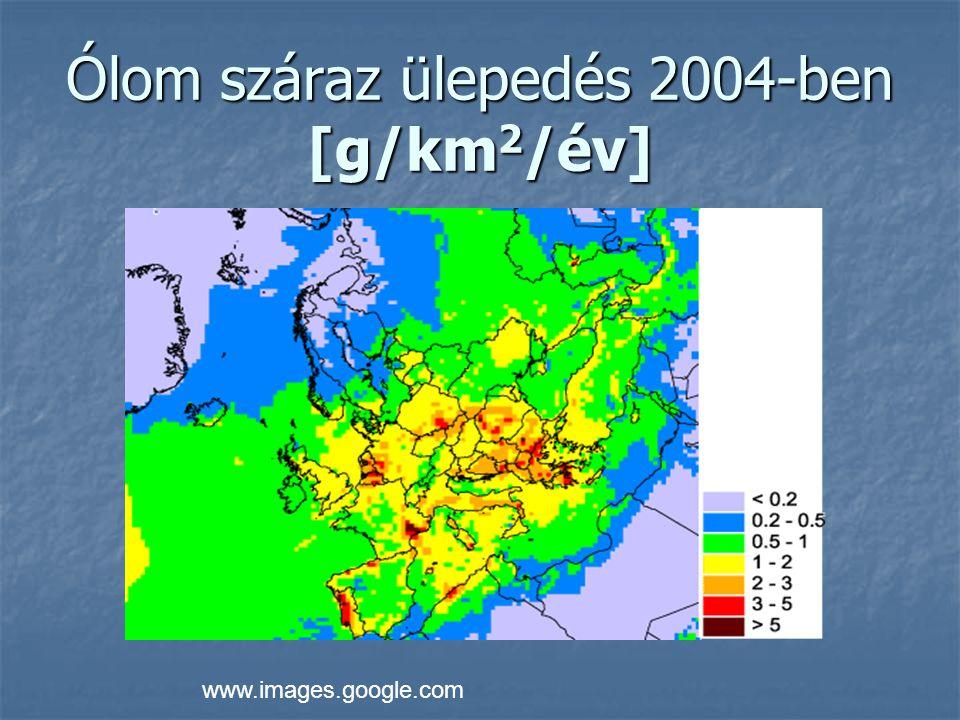 Higany száraz ülepedés 2004-ben [g/km 2 /év] www.images.google.com