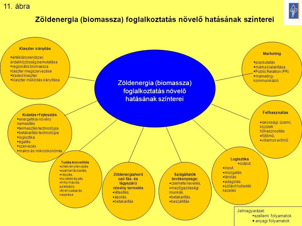 18 Zöldenergia (biomassza) foglalkoztatás növelő hatásának színterei Tudás közvetítés  ültetvénytervezés  szaktanácsadás,  képzés,  továbbképzés 