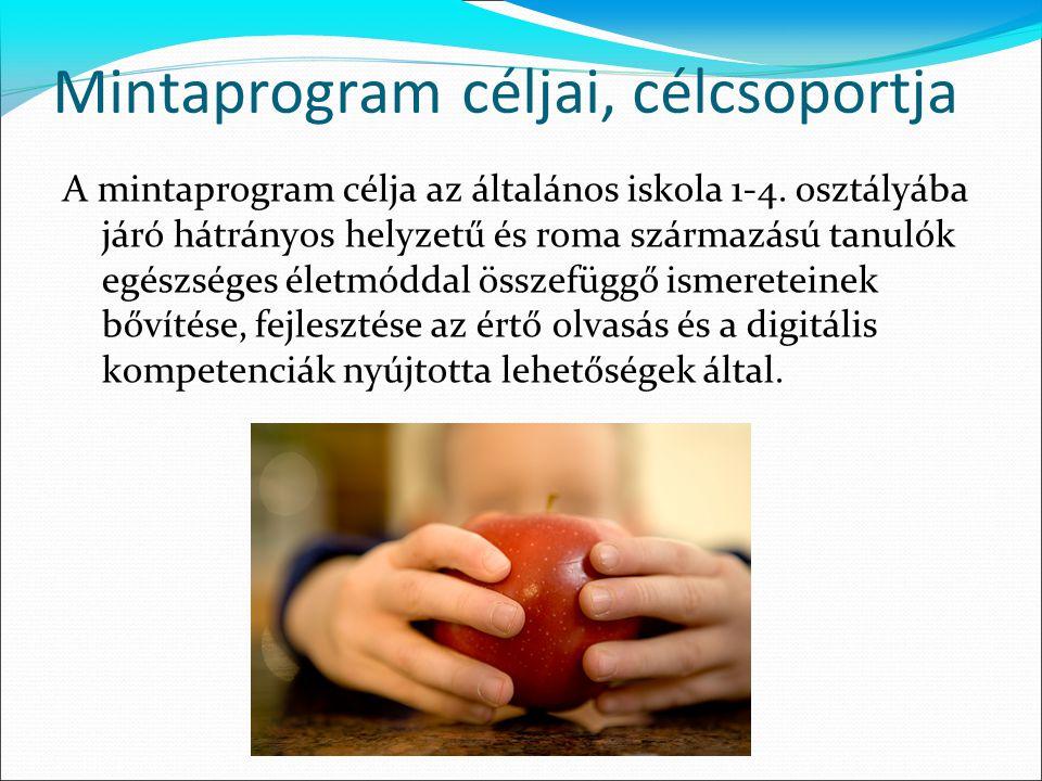 Mintaprogram céljai, célcsoportja A mintaprogram célja az általános iskola 1-4. osztályába járó hátrányos helyzetű és roma származású tanulók egészség