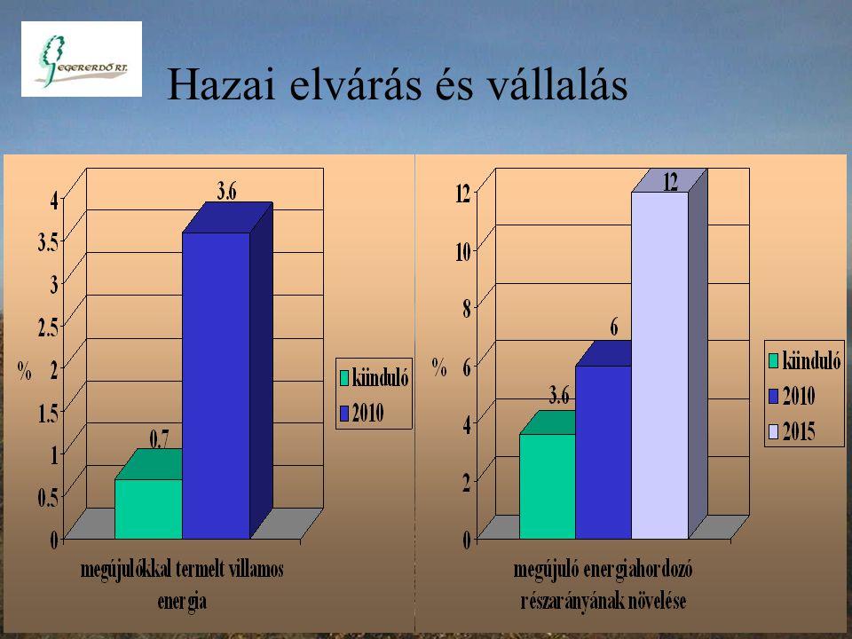 A kitermelt fa választéka 48 % 52 % 2.8 millió m3