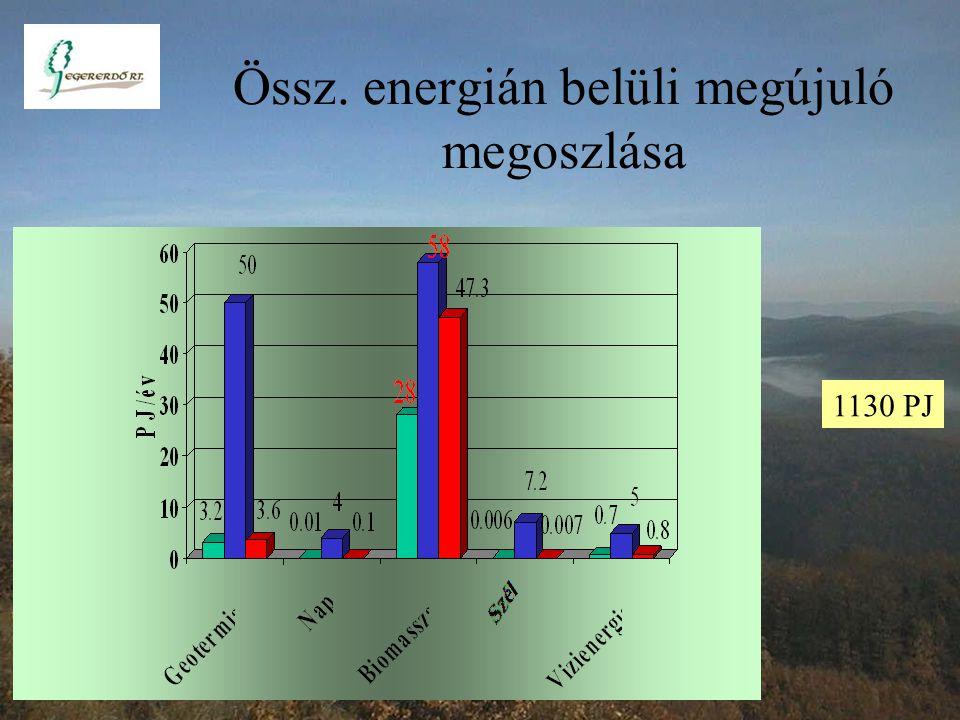 Erőművekben felhasznált energiahordozók (PJ)