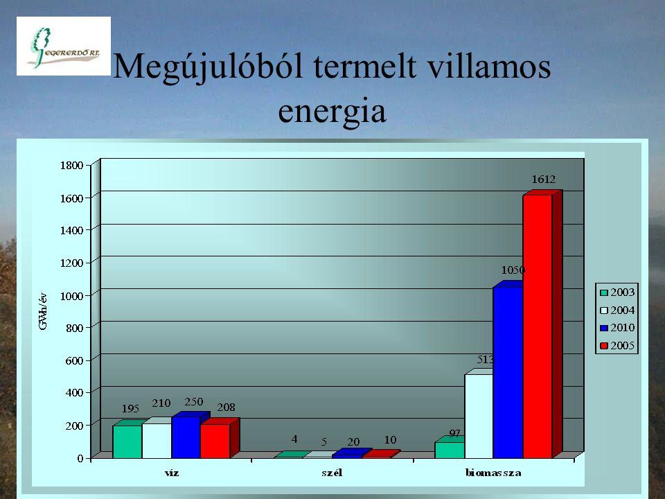 Megújulóból termelt villamos energia részaránya 0.4 % 2.2 % 4.14 % EU felé tett vállalás 3.6 %