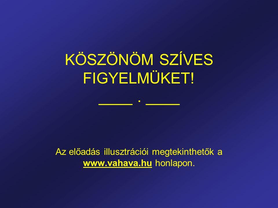 KÖSZÖNÖM SZÍVES FIGYELMÜKET! ____. ____ Az előadás illusztrációi megtekinthetők a www.vahava.hu honlapon.