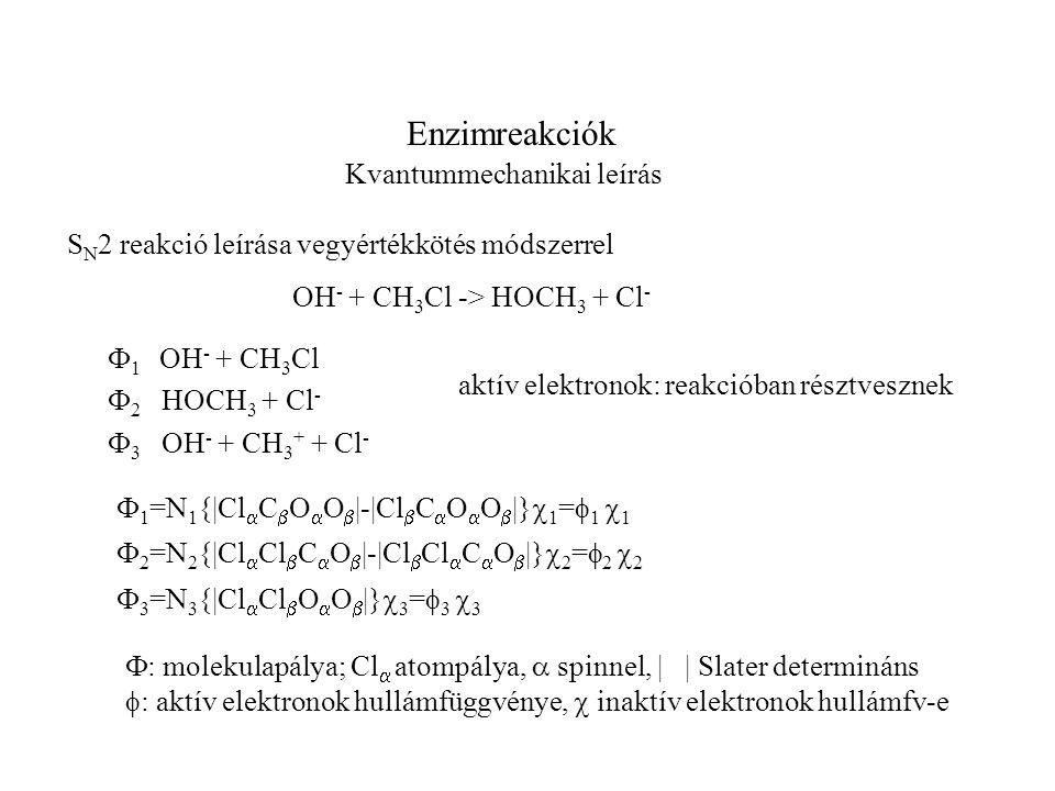 Enzimreakciók Kvantummechanikai leírás S N 2 reakció leírása vegyértékkötés módszerrel OH - + CH 3 Cl -> HOCH 3 + Cl -  1 OH - + CH 3 Cl  2 HOCH 3 + Cl -  3 OH - + CH 3 + + Cl - aktív elektronok: reakcióban résztvesznek  1 =N 1 {|Cl  C  O  O  |-|Cl  C  O  O  |}  1 =  1  1  2 =N 2 {|Cl  Cl  C  O  |-|Cl  Cl  C  O  |}  2 =  2  2  3 =N 3 {|Cl  Cl  O  O  |}  3 =  3  3  : molekulapálya; Cl  atompálya,  spinnel, | | Slater determináns  : aktív elektronok hullámfüggvénye,  inaktív elektronok hullámfv-e
