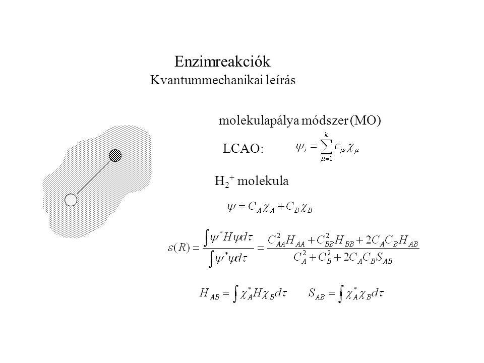 Enzimreakciók Kvantummechanikai leírás molekulapálya módszer (MO) LCAO: H 2 + molekula
