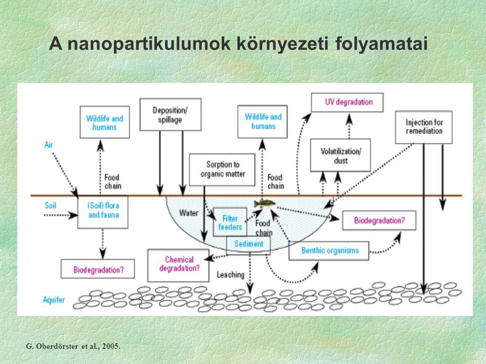 A nanopartikulumok környezeti folyamatai G. Oberdörster et al., 2005.