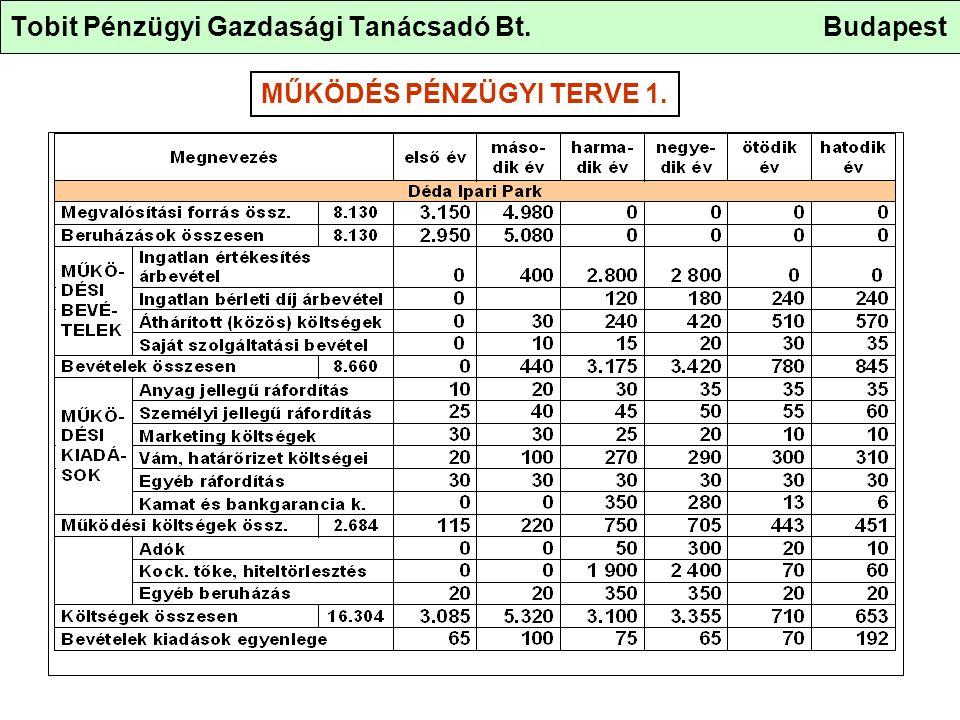 Tobit Pénzügyi Gazdasági Tanácsadó Bt. Budapest MŰKÖDÉS PÉNZÜGYI TERVE 1.