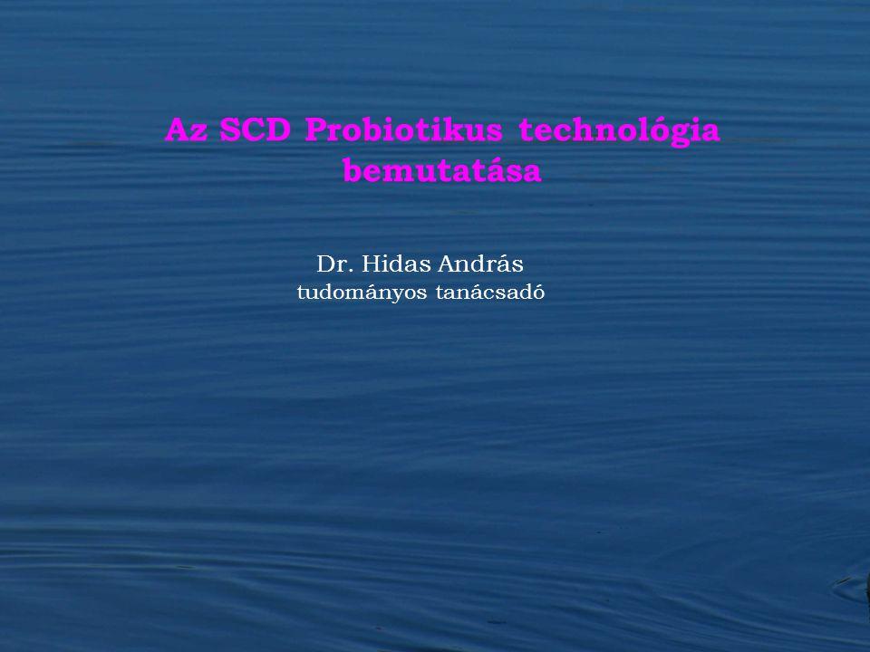 Dr. Hidas András tudományos tanácsadó Az SCD Probiotikus technológia bemutatása