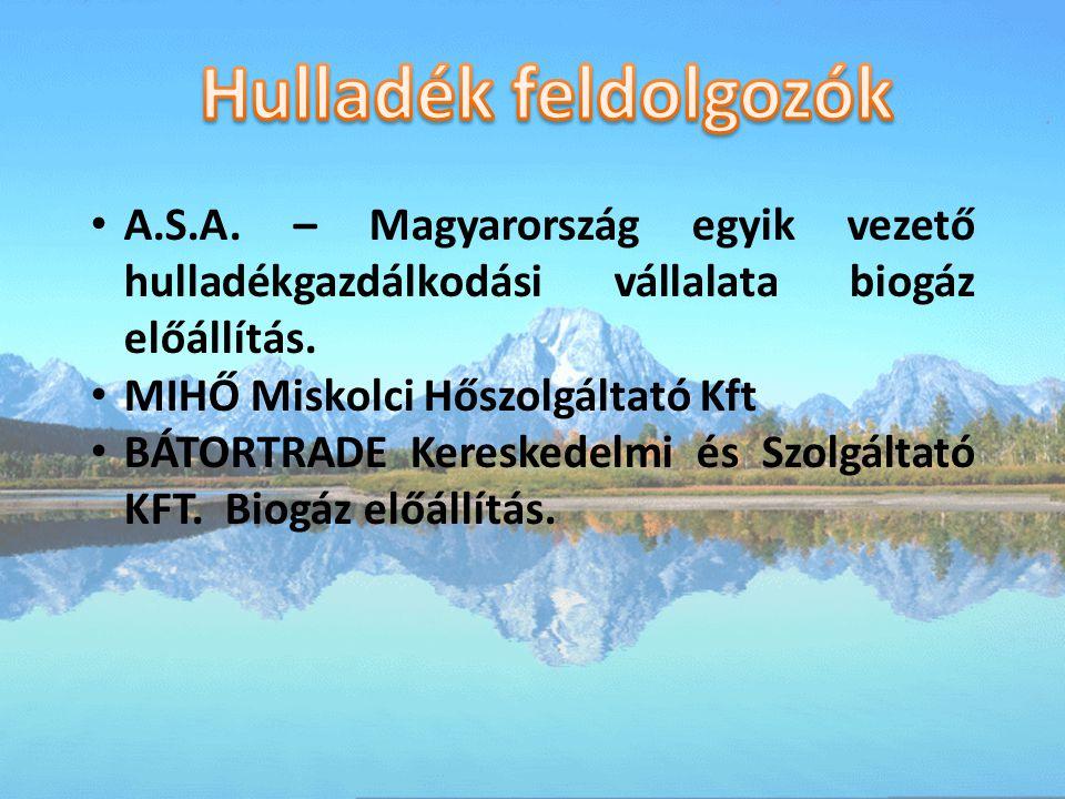 A.S.A.– Magyarország egyik vezető hulladékgazdálkodási vállalata biogáz előállítás.