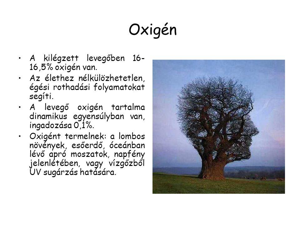 Oxigén A kilégzett levegőben 16- 16,5% oxigén van. Az élethez nélkülözhetetlen, égési rothadási folyamatokat segíti. A levegő oxigén tartalma dinamiku