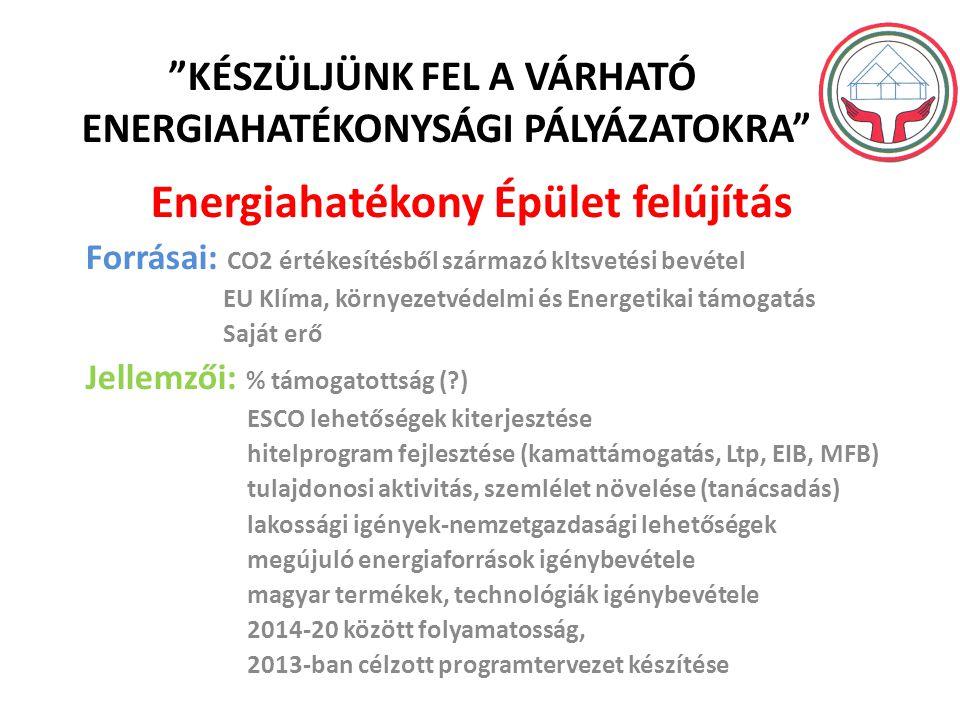 KÉSZÜLJÜNK FEL A VÁRHATÓ ENERGIAHATÉKONYSÁGI PÁLYÁZATOKRA Energiahatékony Épület felújítás Forrásai: CO2 értékesítésből származó kltsvetési bevétel EU Klíma, környezetvédelmi és Energetikai támogatás Saját erő Jellemzői: % támogatottság (?) ESCO lehetőségek kiterjesztése hitelprogram fejlesztése (kamattámogatás, Ltp, EIB, MFB) tulajdonosi aktivitás, szemlélet növelése (tanácsadás) lakossági igények-nemzetgazdasági lehetőségek megújuló energiaforrások igénybevétele magyar termékek, technológiák igénybevétele 2014-20 között folyamatosság, 2013-ban célzott programtervezet készítése